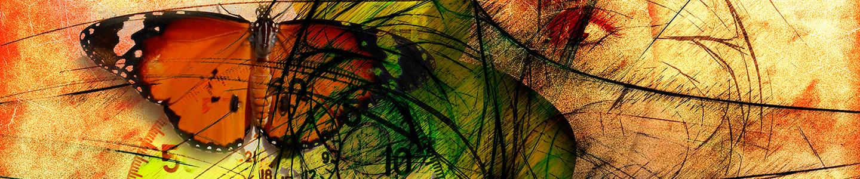 butterfly-744115-baja